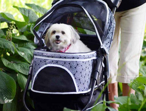 Migliore passeggino per cani