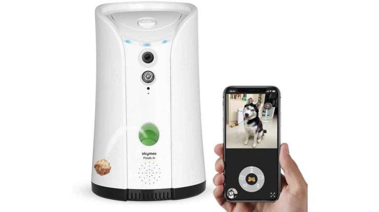 Migliori videocamere sorveglia animali