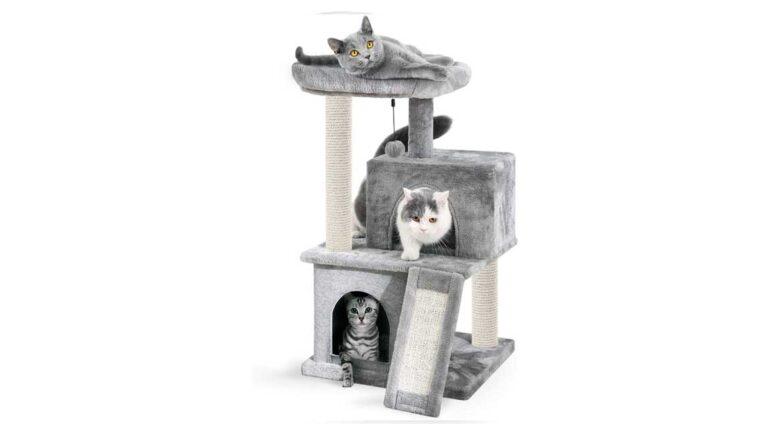 I migliori tiragraffi per gatti